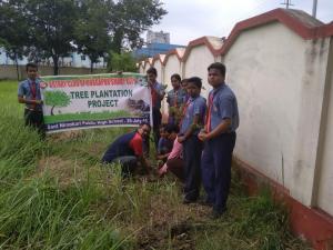 plantation10
